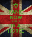 PANIC NOW JUBILEE IS A HORSE - Personalised Poster large