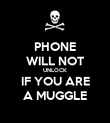 PHONE WILL NOT UNLOCK IF YOU ARE A MUGGLE - Personalised Poster large