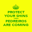 PROTECT YOUR SHINS 'cause PEDREIROS ARE COMING - Personalised Poster large