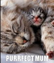 PURRFECT MUM - Personalised Poster large