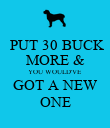 PUT 30 BUCK MORE & YOU WOULD'VE GOT A NEW ONE - Personalised Poster large