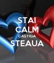 STAI CALM CASTIGA STEAUA  - Personalised Poster large