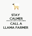 STAY  CALMER when you want to harm a llama CALL A LLAMA FARMER  - Personalised Poster large