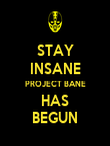 STAY INSANE PROJECT BANE HAS BEGUN - Personalised Poster large