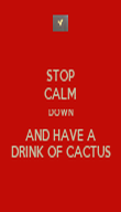 STOP CALM DOWN AND HAVE A DRINK OF CACTUS - Personalised Poster large