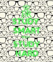 STUDY  SMART NOT  STUDY HARD - Personalised Poster large
