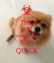 THIS IS A POMERANIAN RUN QUICK - Personalised Poster large