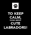 TO KEEP CALM, THINK ABOUT CUTE LABRADORS! - Personalised Poster large