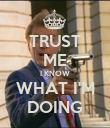 TRUST ME I KNOW WHAT I'M DOING - Personalised Poster large