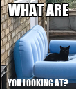 WHAT ARE YOU LOOKING AT? - Personalised Poster large