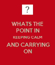 WHATS THE POINT IN KEEPING CALM  AND CARRYING ON - Personalised Poster large