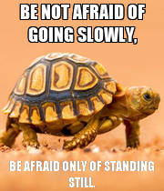 BE NOT AFRAID OF GOING SLOWLY, BE AFRAID ONLY OF STANDING STILL. - Personalised Poster large