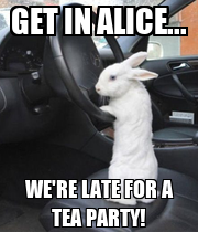 GET IN ALICE... WE'RE LATE FOR A TEA PARTY! - Personalised Poster large