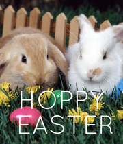 HOPPY  EASTER - Personalised Poster large