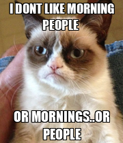 I DONT LIKE MORNING PEOPLE  OR MORNINGS..OR PEOPLE - Personalised Poster large