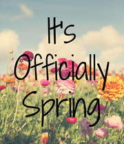 It's Officially Spring - Personalised Poster large