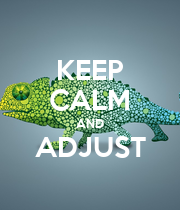 KEEP CALM AND ADJUST  - Personalised Poster large