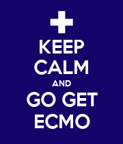 KEEP CALM AND GO GET ECMO - Personalised Large Wall Decal
