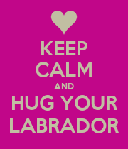 KEEP CALM AND HUG YOUR LABRADOR - Personalised Poster large