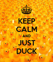 KEEP CALM AND JUST DUCK - Personalised Poster large