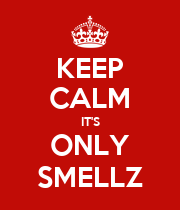 KEEP CALM IT'S ONLY SMELLZ - Personalised Poster large