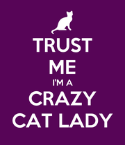 TRUST ME I'M A CRAZY CAT LADY - Personalised Poster large