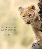 YOU CAN DO ANYTHING,