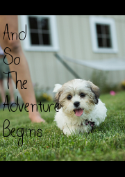 And So The  Adventure Begins - Personalised Poster A1 size