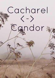 Cacharel <-> Candor      - Personalised Poster A4 size