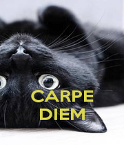 CARPE DIEM - Personalised Poster A1 size