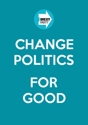 CHANGE POLITICS  FOR GOOD - Personalised Poster A1 size