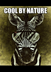 COOL BY NATURE  - Personalised Poster A4 size