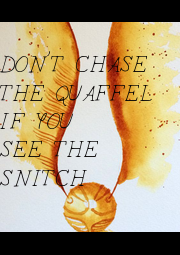 DON'T CHASE THE QUAFFEL IF YOU SEE THE SNITCH - Personalised Poster A1 size