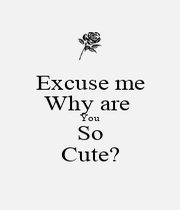 Excuse me Why are  You So Cute? - Personalised Poster A4 size