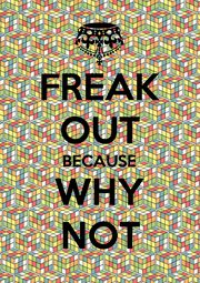 FREAK OUT BECAUSE WHY NOT - Personalised Poster A4 size
