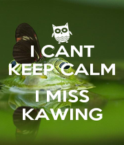 I CANT KEEP CALM  I MISS KAWING - Personalised Poster A1 size