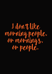 I don't like  morning people, or mornings, or people. - Personalised Poster A1 size