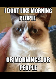 I DONT LIKE MORNING PEOPLE  OR MORNINGS..OR PEOPLE - Personalised Poster A4 size