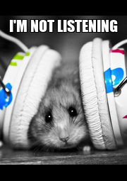 I'M NOT LISTENING  - Personalised Poster A1 size
