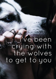 i've been  crying with  the wolves  to get to you - Personalised Poster A1 size