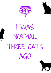 I WAS NORMAL  THREE CATS AGO - Personalised Poster A4 size