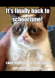 It's finally back to school time! I was getting tired of sleeping and enjoying my life... - Personalised Poster A4 size