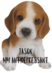 Jason My Antidepressant - Personalised Poster A4 size