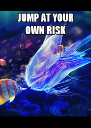 JUMP AT YOUR OWN RISK  - Personalised Poster A4 size
