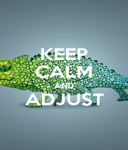 KEEP CALM AND ADJUST  - Personalised Poster A4 size