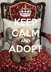 KEEP CALM AND ADOPT  - Personalised Poster A4 size