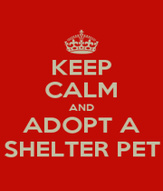 KEEP CALM AND ADOPT A SHELTER PET - Personalised Poster A1 size
