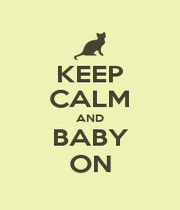 KEEP CALM AND BABY ON - Personalised Poster A1 size