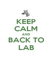 KEEP CALM AND BACK TO LAB - Personalised Poster A1 size