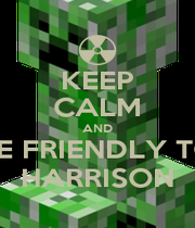 KEEP CALM AND BE FRIENDLY TO HARRISON - Personalised Poster A1 size
